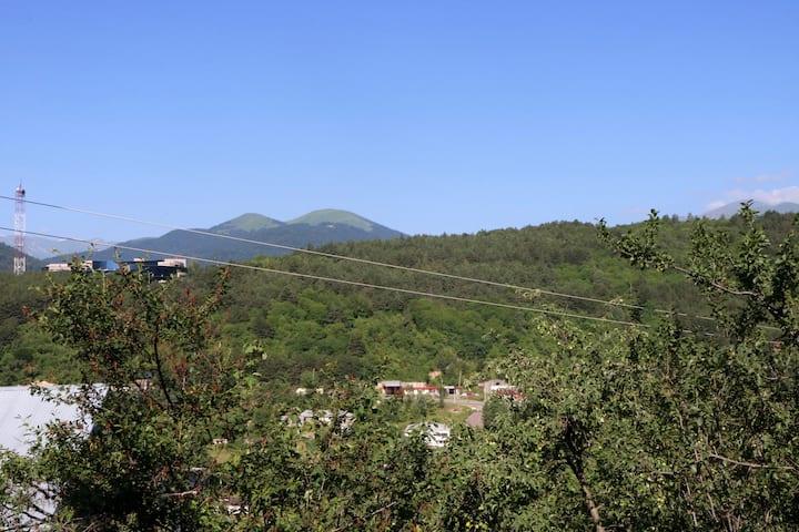 Dilijan View