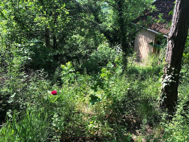 Gartenhaus Natur Idylle