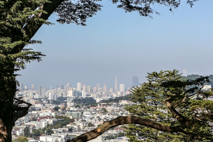 Modern 4BR/3.5BA Treehouse with views of SF
