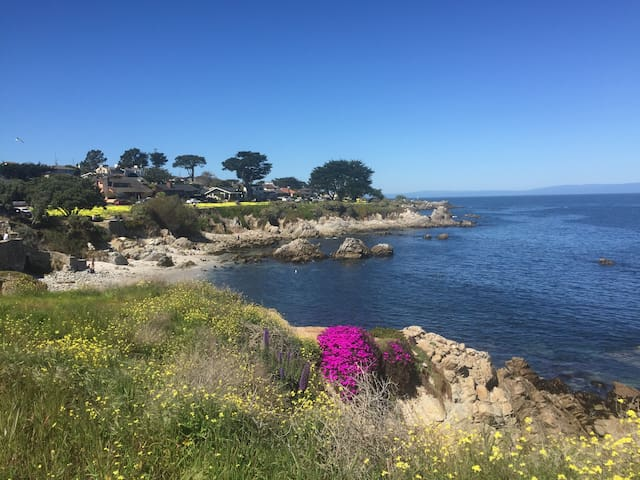 Center of Pacific Grove Apt w/ Aquarium Tickets - Pacific Grove - Flat