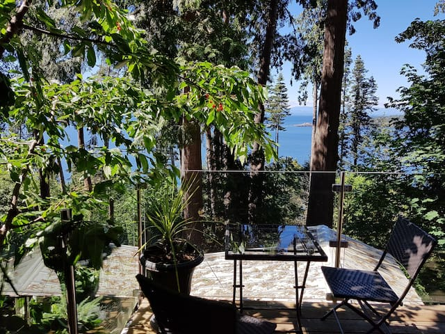 Spectacular waterfront coach house in the trees