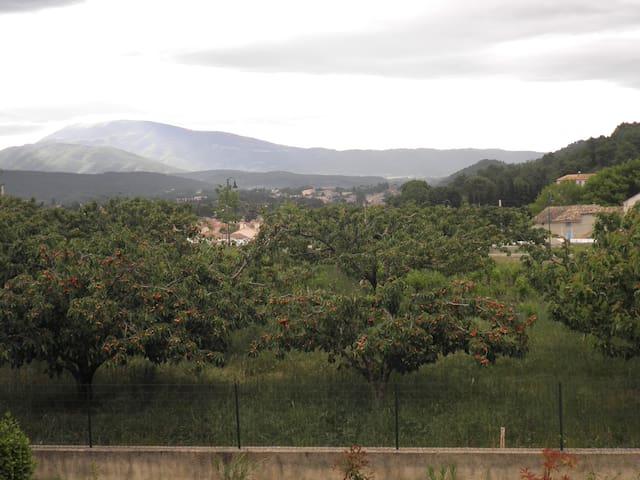 spacieux studio face au Mont Ventoux