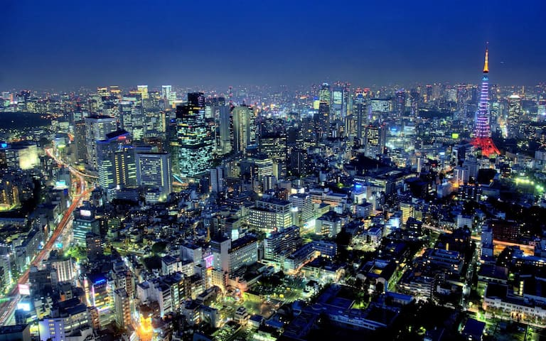 Awesome City View Shinjuku Studio! - Shinjuku-ku - Daire