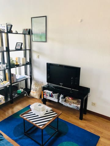 Furnished non-shared flat in city convenient place