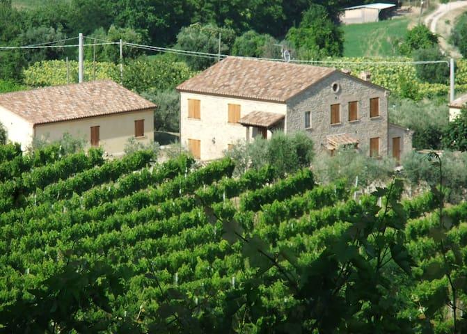 Casale immerso nel verde - Santa Vittoria In Matenano - Villa