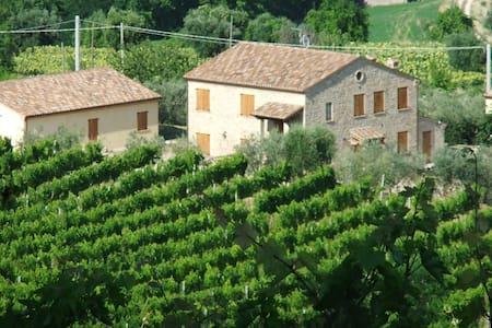 Casale immerso nel verde - Santa Vittoria In Matenano