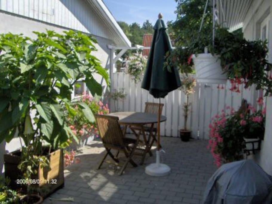 Dejlig gårdhave