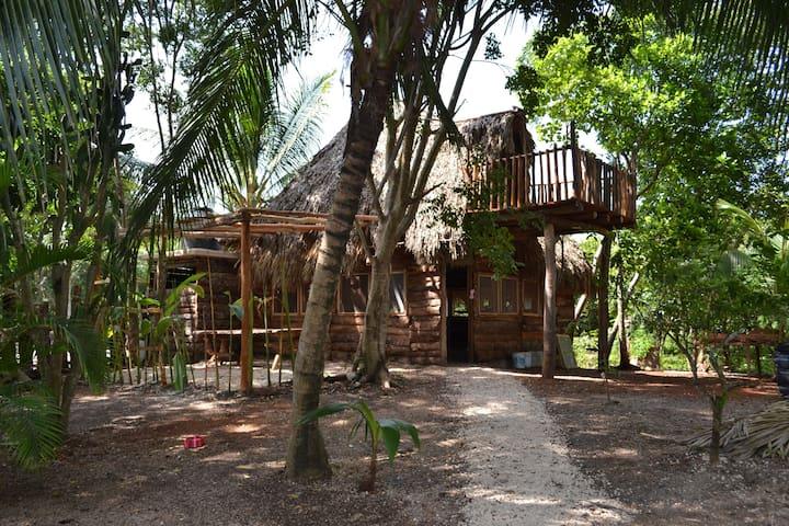 #CasitaMágica~A magical experience in MayanJungle~