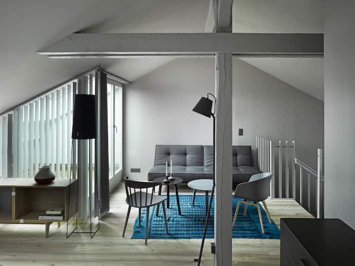 Loft Apartment in Berne