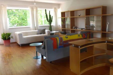 Modern and eco-friendly Loft - Cantanhede - Loft