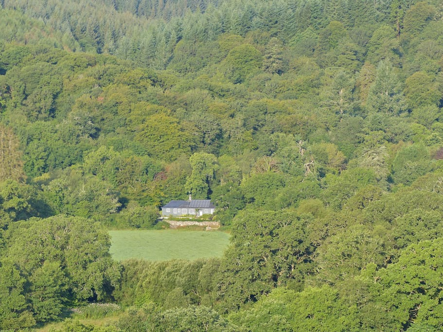 Surrounded by extensive woodland. A real getaway!