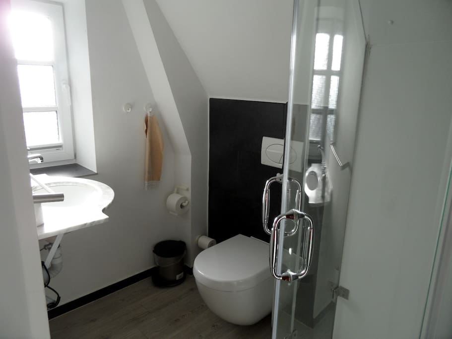 Duschbad mit Toilette und Waschtisch