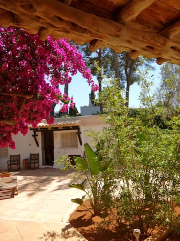 Ibiza best central location  (#2) - Sant Rafel - Villa