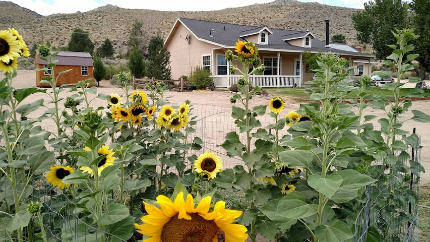 Nevada Skies Ranch Retreat bunkhouse
