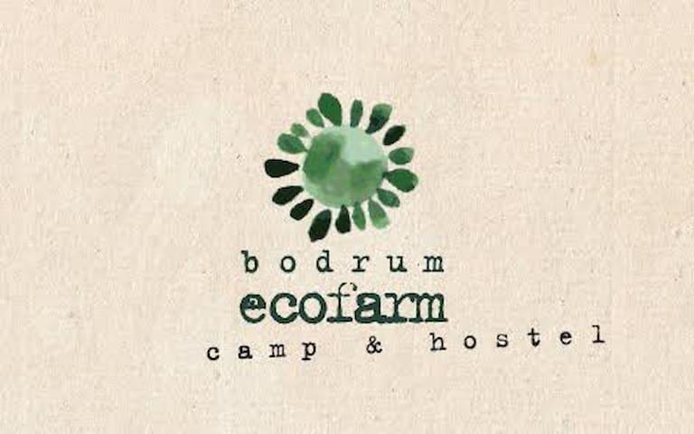 Bodrum Ecofarm Camp & Hostel 3 - Turgutreis Belediyesi - Yatakhane