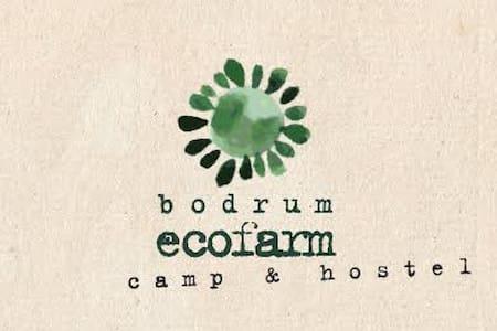 Bodrum Ecofarm Camp & Hostel 3 - Turgutreis Belediyesi - หอพัก