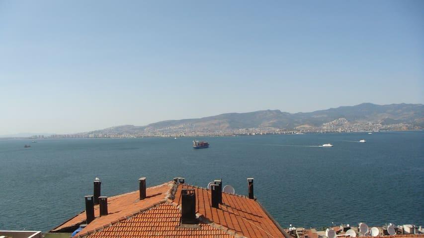 Gulf views 2