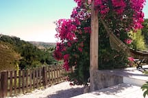 The house, the valley and the bougainvillea
