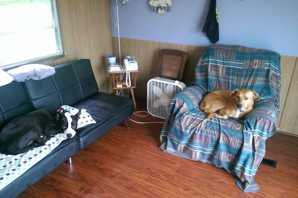 The living room with recliner and futon. Wireless internet throughout, dogs enjoy lounging on a lazy afternoon.