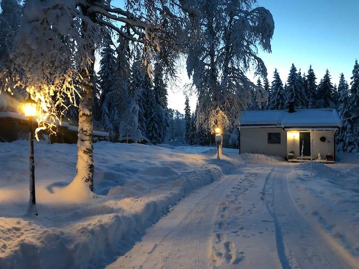 Room near Birkebeiner Ski-stadium in shared Cabin