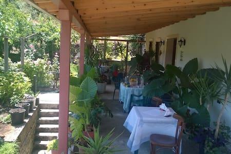Erindi Guesthouse & Garden Terrace - Gjirokaster - Hus