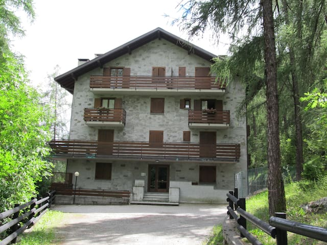 Week end relax immerso nella pineta - Chiesa In Valmalenco - Appartement