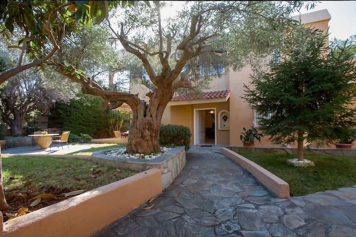 Beautiful Cosy Villa in the centre of Saronida