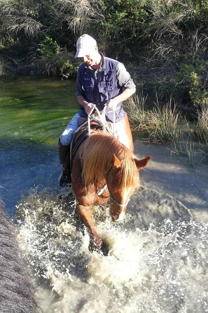 In the lake with the horse