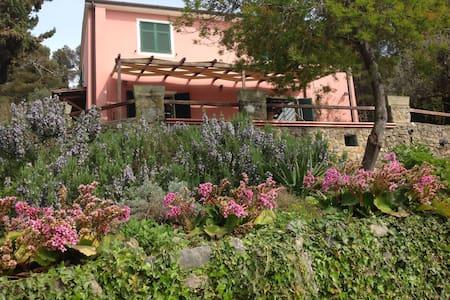 Liguria Villa Mediterranean sea - Lerici - Villa