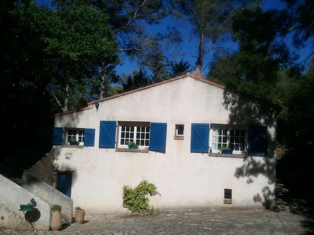 Maison campagne milieu des bois - Trans-en-Provence - House