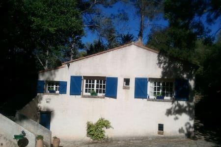 Maison campagne milieu des bois - Trans-en-Provence