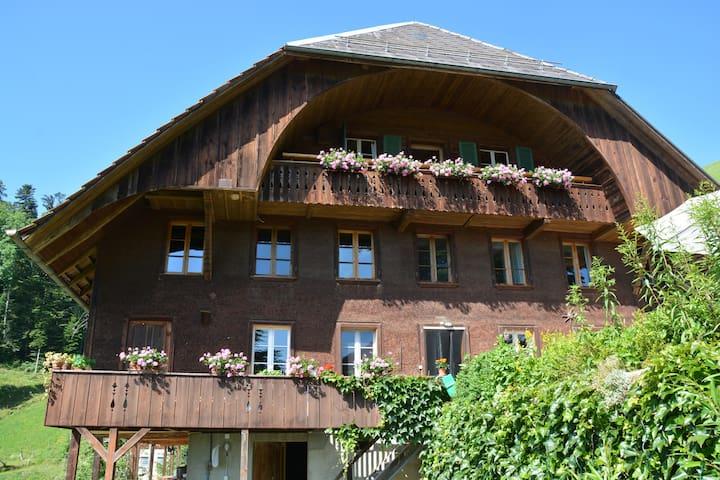 Ferienhaus/Groups Neuhaus Emmenmatt - Emmenmatt - Wohnung