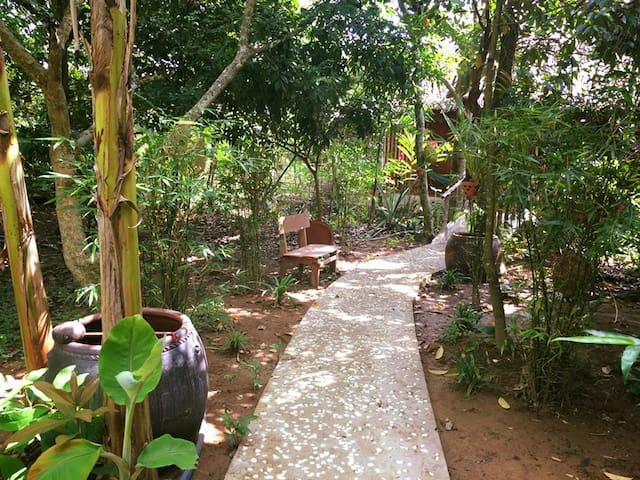 Jardin Du Mekong Homestay - Twin 07 (Full package)