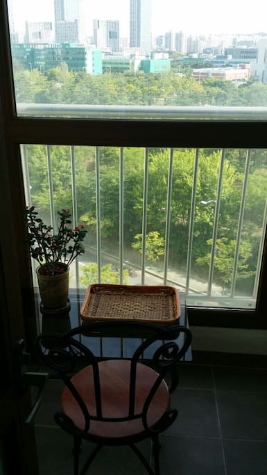 You can see the the Park through the the window.