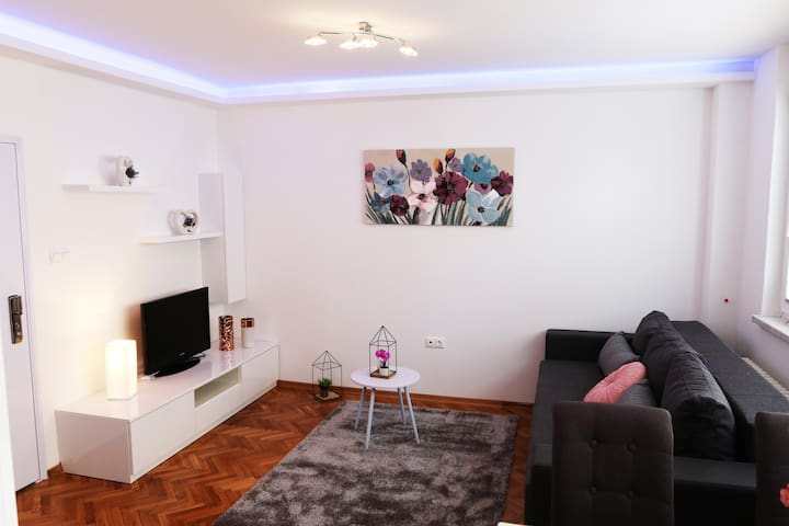 LUXURY APARTMENT DINA IN THE CENTER OF KARLOVAC