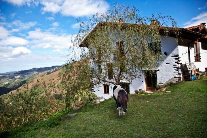 3 Mokorreko Borda Etxalar Navarra - Etxalar - Bed & Breakfast