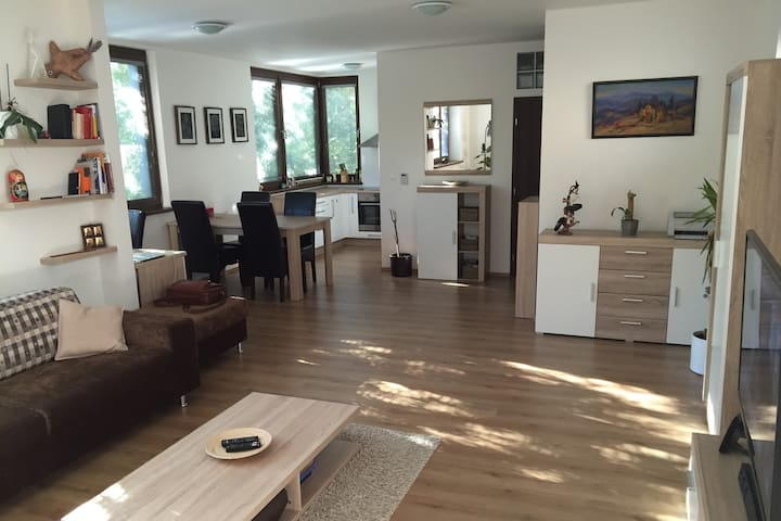 Spacious Business & Family Apartment Old Town