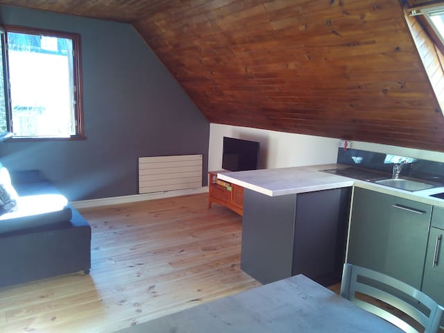 Appartement T2 Luchon (ski, therme...)