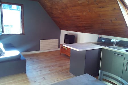 Appartement T2 Luchon (ski, therme...) - Apartment
