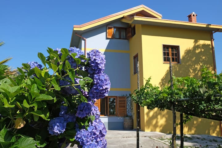 B&B Villa Elisa Agerola - Agerola - Bed & Breakfast
