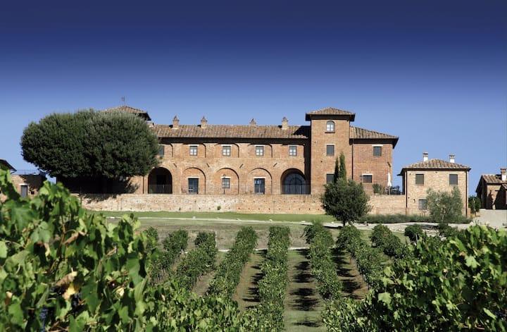 Rural Tuscany | Winefarm with pool | Casa Violetta