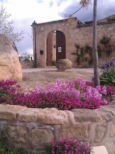 CASTELL PALAU DE TORREBESSES - Torrebesses  - Zamek