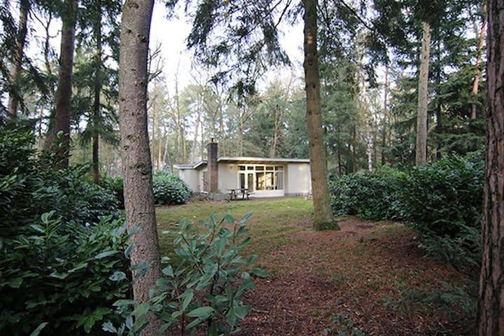 Zomerhuis aan bosmeer - Maarn - Houten huisje