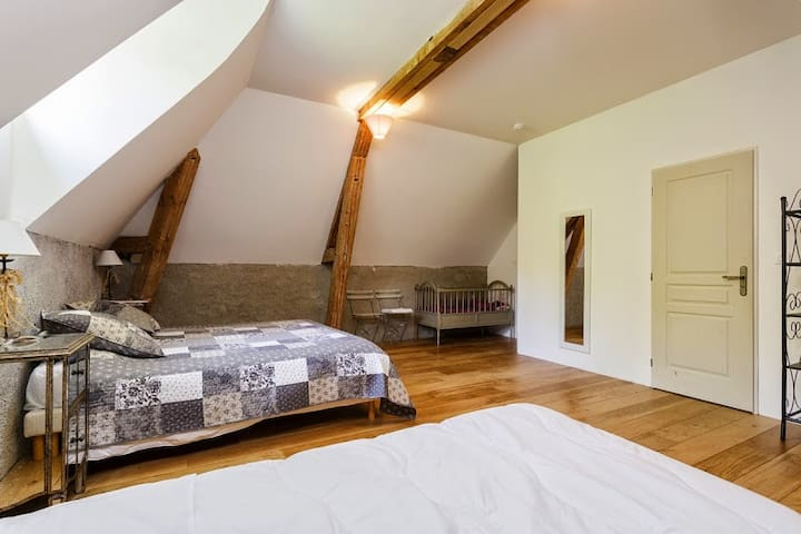 Family room in a Burgund castle - Barbirey-sur-Ouche - Bed & Breakfast