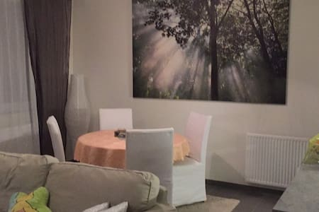 room renting for 1 or 2 persons - Molenbeek-Saint-Jean