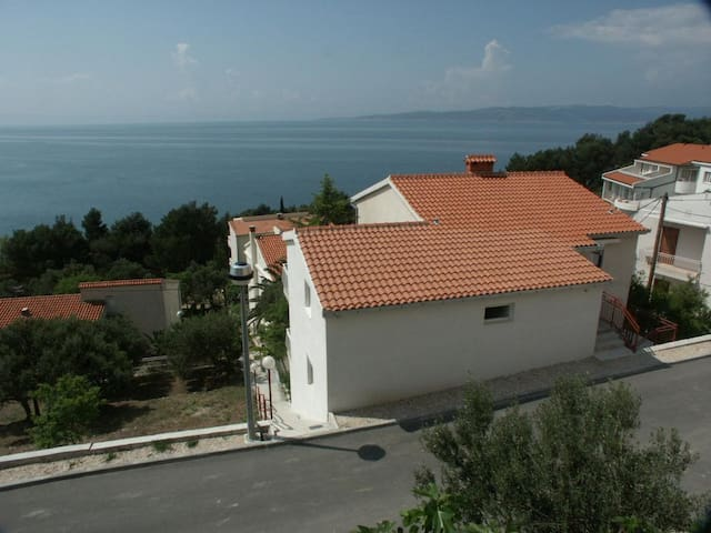 Studio flat with terrace and sea view Baška Voda, Makarska (AS-300-a)