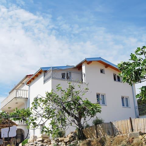 Villa Ester appartment in Lopar Rab - Lopar - Apartament