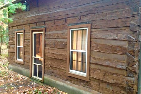 1830's Log Cabin in the Woods - Brohman