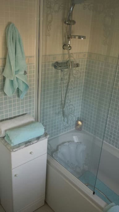 Standing shower over bath in private bathroom