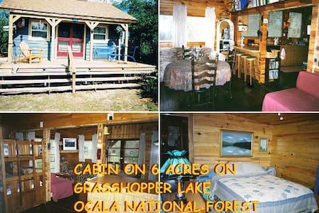 Beautiful vacation cabin on lake. - Cabanya